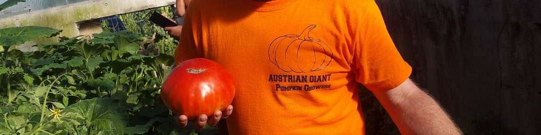 Austrian Giant Pumpkin Growers